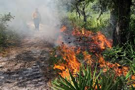 A Controlled Burn; Otherwise Known as a Prescribed Fire